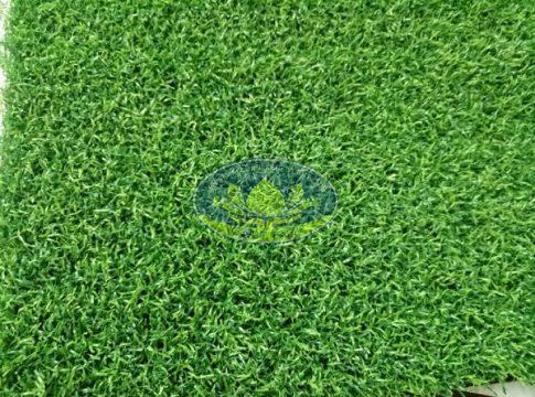 Cỏ nhân tạo sân golf CNT01