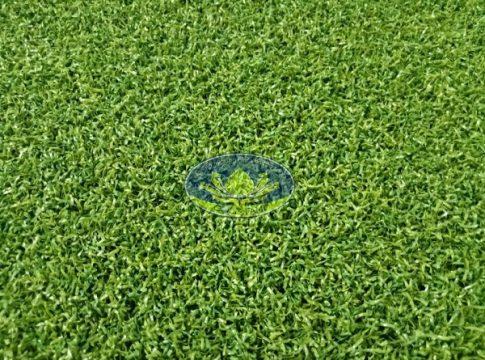 Cỏ nhân tạo sân golf CNT03