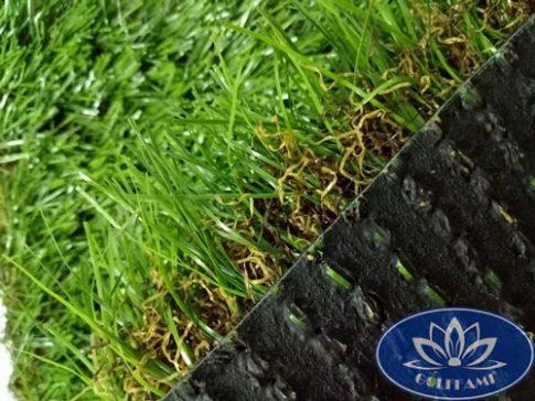 Mặt ngang cỏ nhân tạo sân vườn CNT02