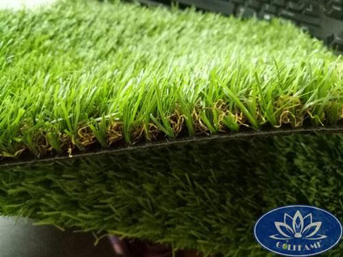 Mặt ngang cỏ nhân tạo sân vườn CNT11