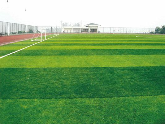 Sân cỏ nhân tạo chất lượng