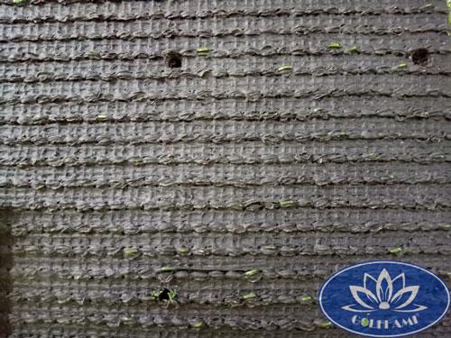 Mặt sau cỏ nhân tạo sân vườn CNT11