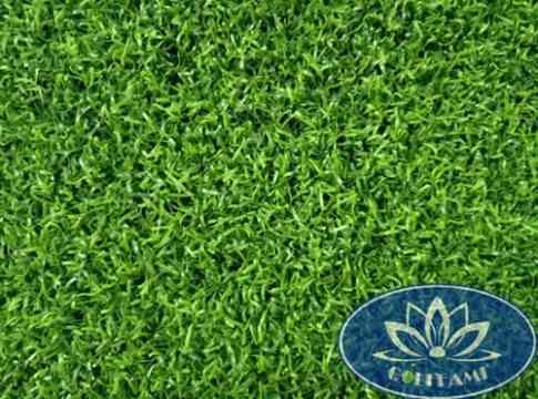 Mặt trên cỏ nhân tạo sân golf CNT01