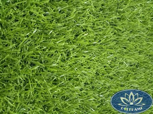 Mặt trên cỏ nhân tạo sân vườn CNT13