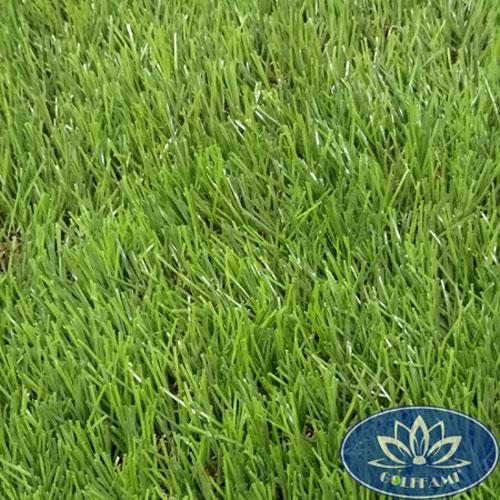 Mặt trên cỏ nhân tạo sân vườn CNT14