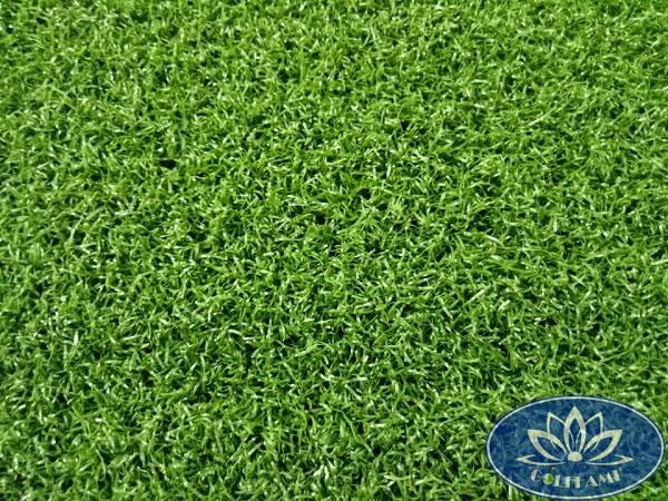 Mặt trên cỏ nhân tạo sân golf CNT02