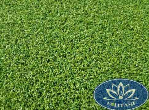Mặt trên cỏ nhân tạo sân golf CNT03