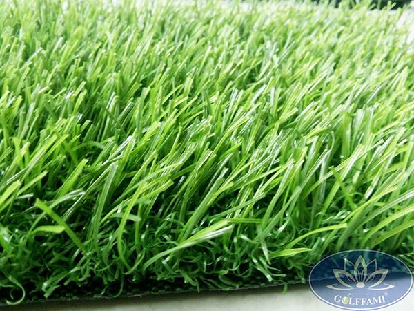 Cỏ nhân tạo sân golf Gomic81 chất lượng cao