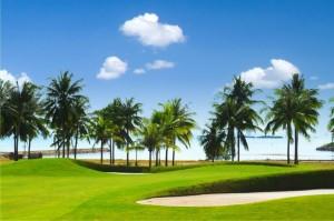 Sân tập Golf Dimond Bay hướng ra biển