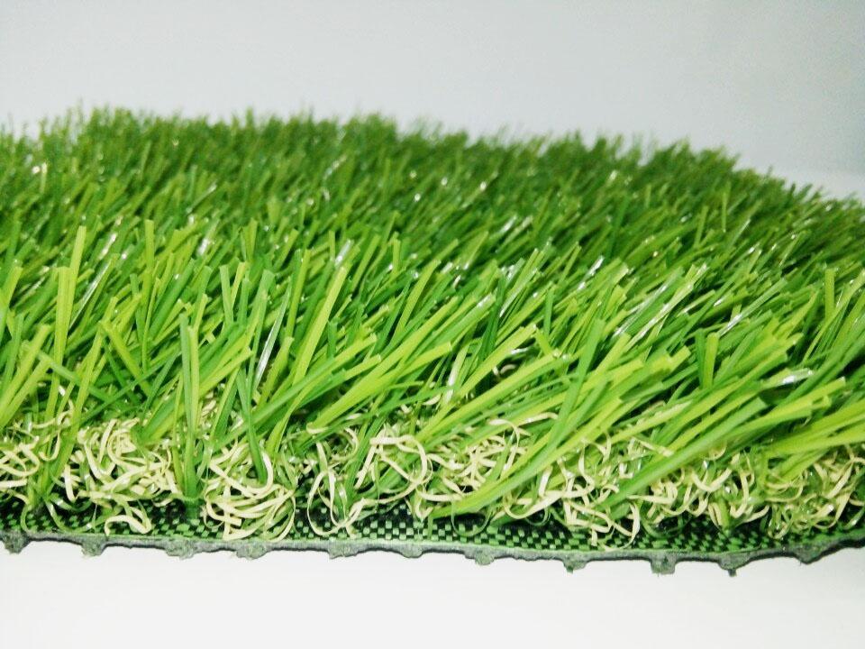 Lát cắt ngang cỏ trang trí 4SU1
