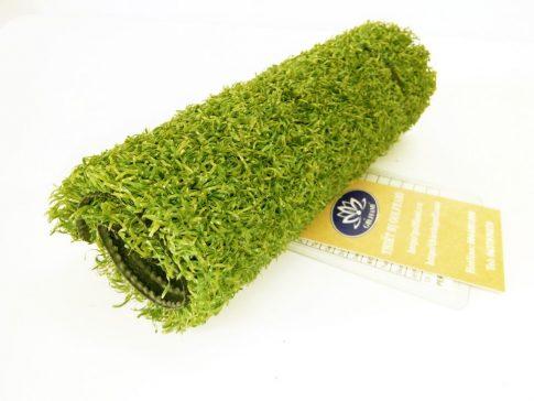 thảm cỏ nhân tạo sân golf 6019