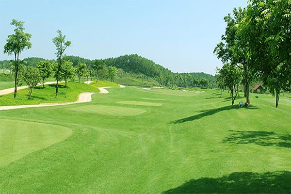 Một góc sân golf Tràng An