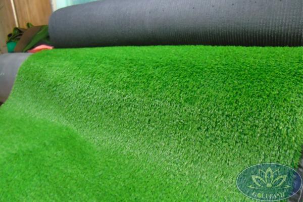 lô cỏ bóng đá5