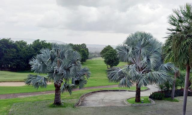 Nét thơ mộng của sân golf ở Thái Lan