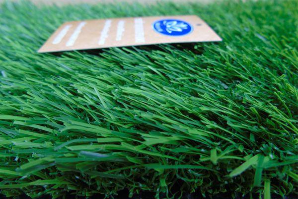 cỏ nhân tạo sân vườn Gomic813