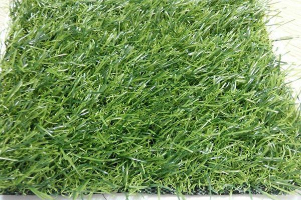 Hình ảnh cỏ nhân tạo đẹp