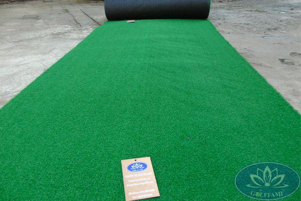 Cỏ sân golf của Golffami