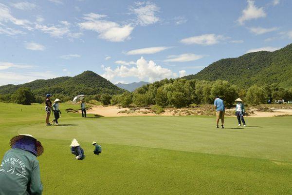 Hướng dẫn kỹ thuật chăm sóc cỏ sân golf