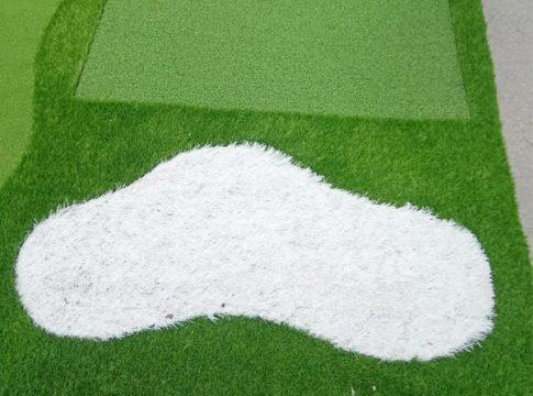 Cỏ sân vườn màu trắng nổi bật của Gomip33