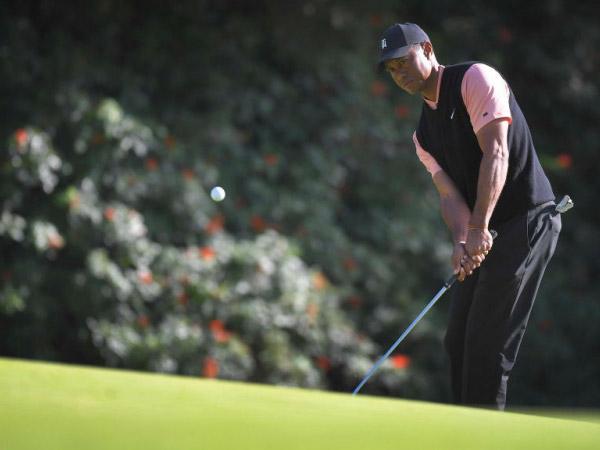 Tại sao Tiger Woods không sử dụng găng tay khi chipping